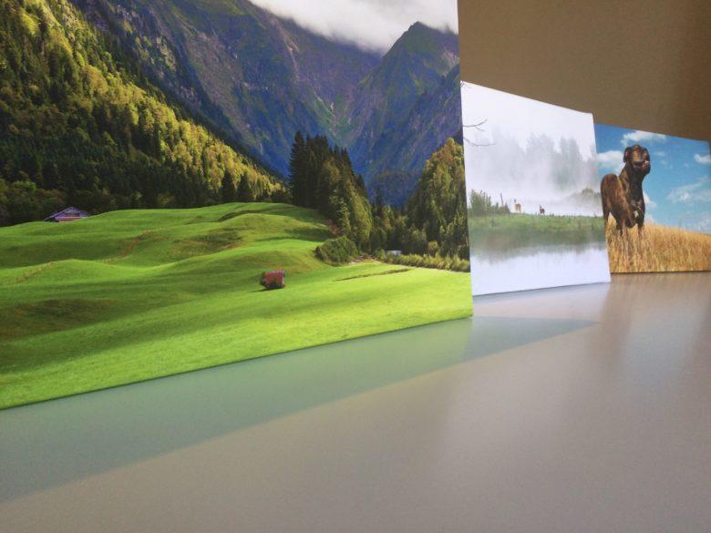oto op canvas, wanddecoratie, beursmateriaal, fotoproducten,foto op hout, foto op aluminium